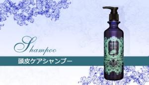 shampoo_moist